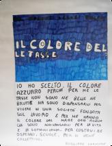 Ich habe Hellblau gewählt, weil Steuern für mich weder schön noch häßlich sind, sondern notwendig für eine Gesellschaft, die auf Arbeit gründet, und für mich haben sie die Farbe des Meeres, weil sie notwendig für das Leben und das Überleben sind, um Krankenhäuser und Schulen zu konstruieren für das Gemeinwohl. Emanuele Ruggiero