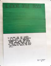 Die Farbe, die von mir gewählt worden ist, ist Grün, das normalerweise die Hoffnung symbolisiert, weil man ja hofft, dass diese Steuern von allen gezahlt werden und man weiter hofft, dass sie gut verwendet werden, für nützliche Zwecke. Giovanna Klasse II F